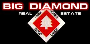 Big Diamond Real Estate